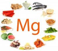 Magnesio es un elemento de la vida