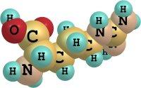 Valina - estimula aminoácidos